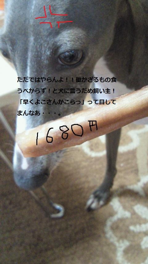 201108191147000.jpg