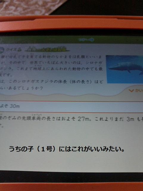 2013081510360000.jpg