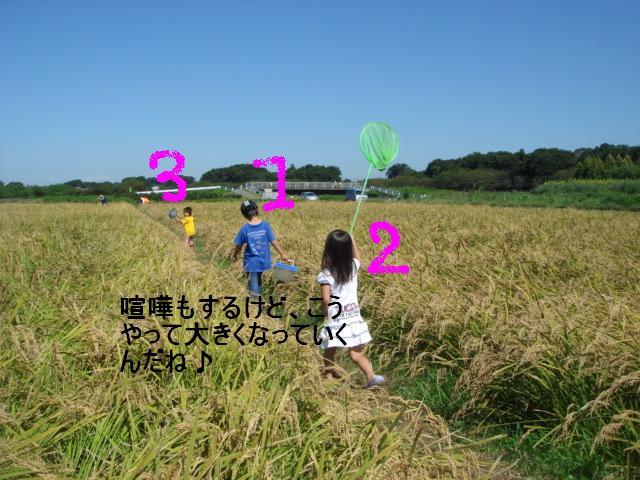 アルバム 064.jpg
