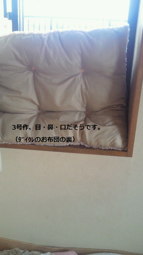 NEC_0922.jpg
