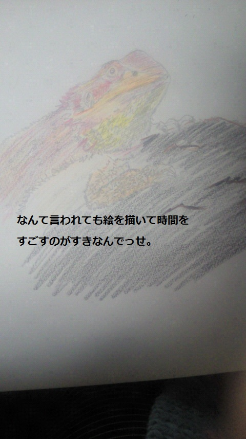 NEC_0992.jpg