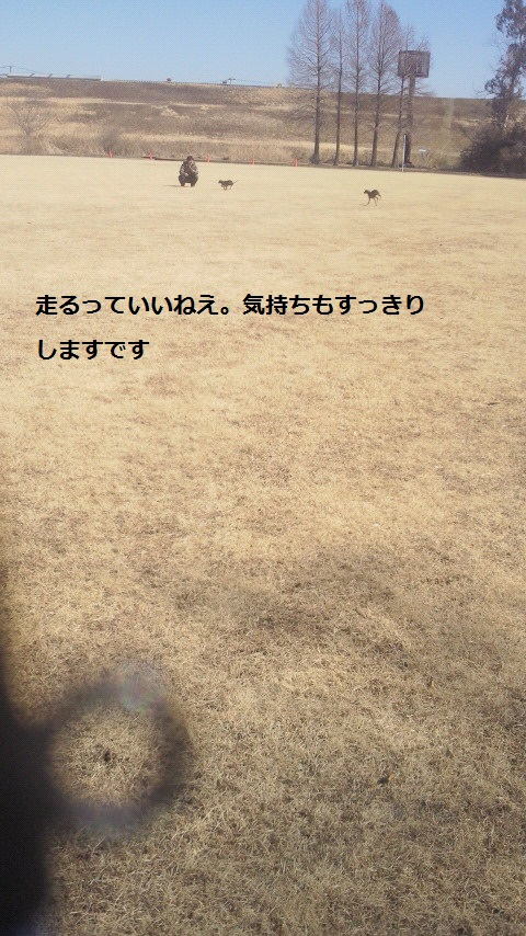 NEC_1145.jpg