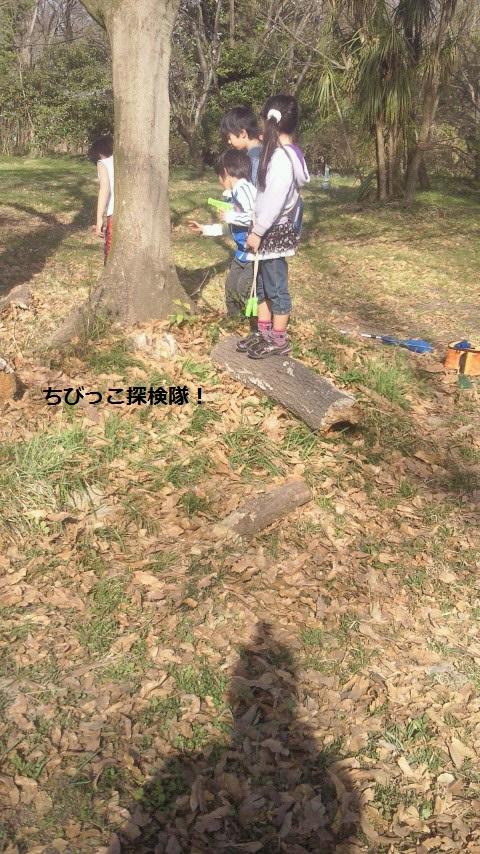 NEC_1203.jpg