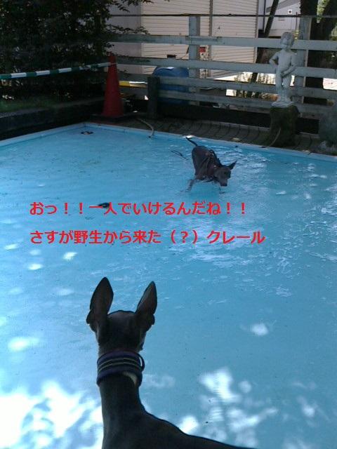 2013081810350000.jpg